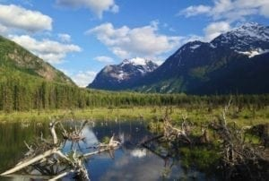 Buy Home Eagle River Alaska